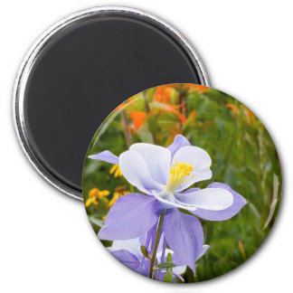 Blue Columbine Magnet