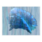 Blue Conch Seashell Art Postcard