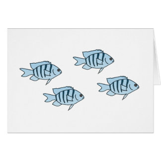 Blue Coral Reef Fish Card
