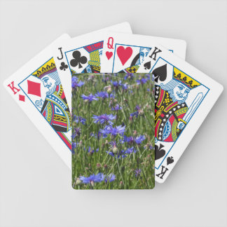 Blue cornflowers in a field bicycle playing cards