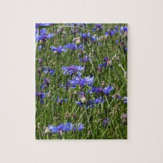 Blue cornflowers in a field jigsaw puzzle