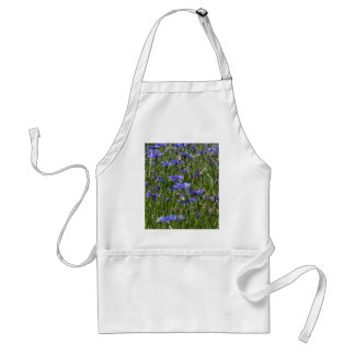 Blue cornflowers in a field standard apron