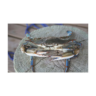 Blue Crab Chesapeake Bay Canvas Art