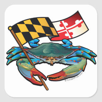 Blue Crab Maryland flag Square Sticker