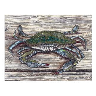 Blue Crab on Dock Postcard