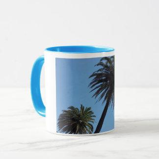 Blue cup palm