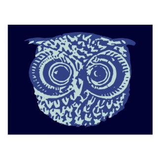 Blue cute owl picture postcard