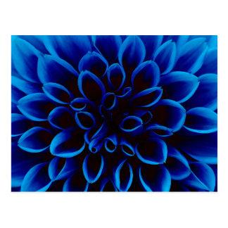 Blue Dahlia Postcard