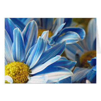 Blue Daises #2 Card