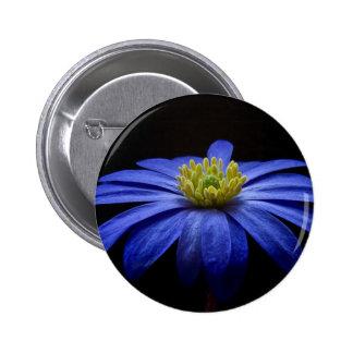 Blue Daisy Gerbera Flower on a Black background 2 Inch Round Button