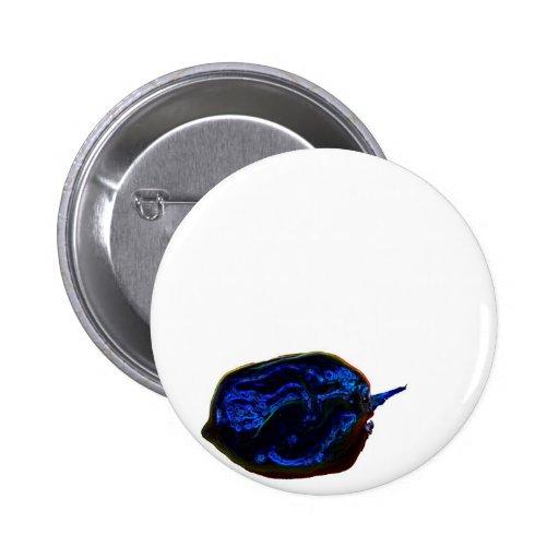 blue dark pepper at bottom food image pins