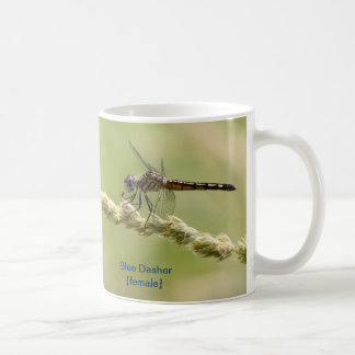 Blue Dasher Mug