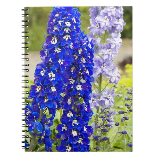 Blue Delphinium Floral Notebooks