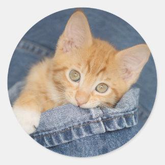 Blue Denim Orange Kitty Sticker