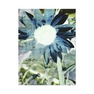 Blue Denim Sunflower Canvas