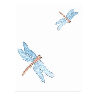 Blue Dragon Fly Postcard