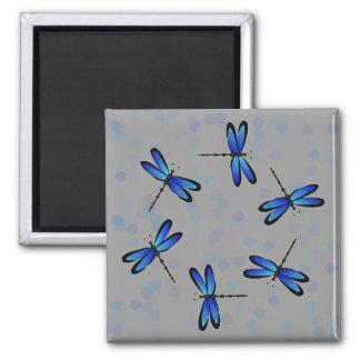 blue dragonflies II Magnet
