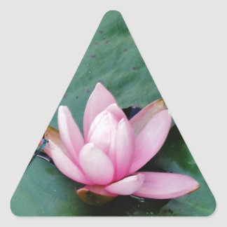 Blue Dragonflies on a pink lotus flower Triangle Stickers