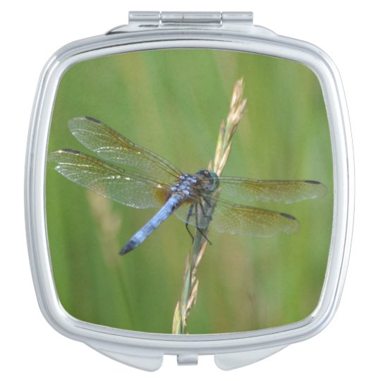 Blue Dragonfly Compact Mirror