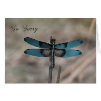 Blue Dragonfly Nature Sympathy Card