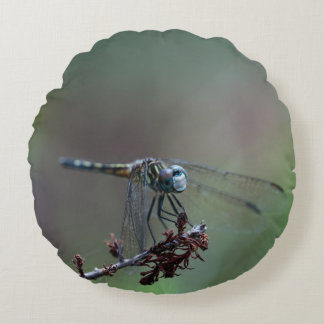 Blue Dragonfly on Twig Round Pillow