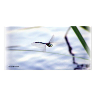 Blue Dragonfly Personalized Photo Card