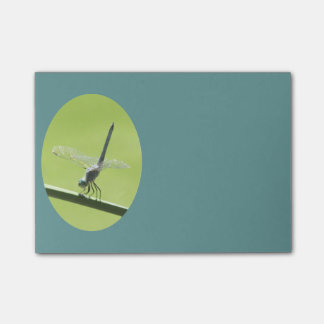 Blue Dragonfly Post-it Notes