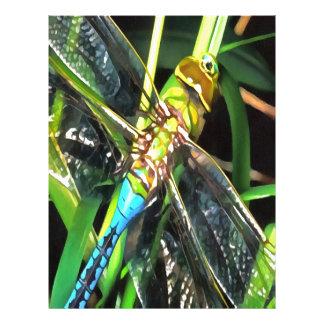 Blue Dragonfly Wings Letterhead