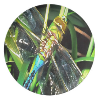 Blue Dragonfly Wings Party Plate