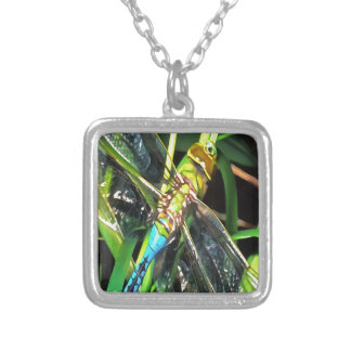 Blue Dragonfly Wings Silver Plated Necklace