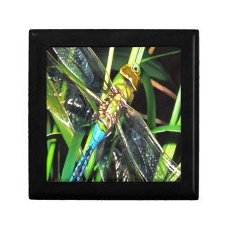 Blue Dragonfly Wings Trinket Box