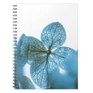 Blue Dream Notebook