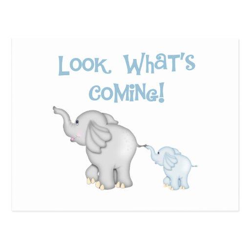 Blue Elephant Pregnancy Post Cards