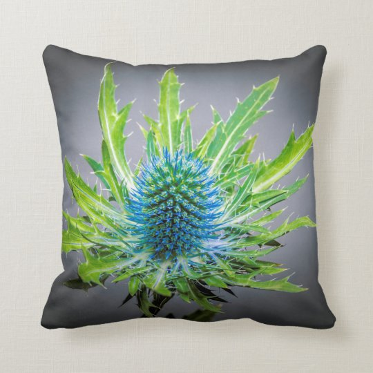 Blue Eryngium cushion