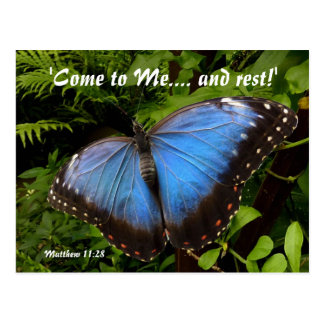 Blue exotic butterfly postcard