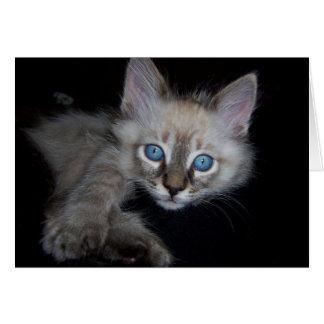 Blue-Eyed Baby Boy Card