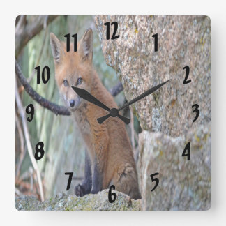Blue Eyed Baby Fox Square Wall Clock