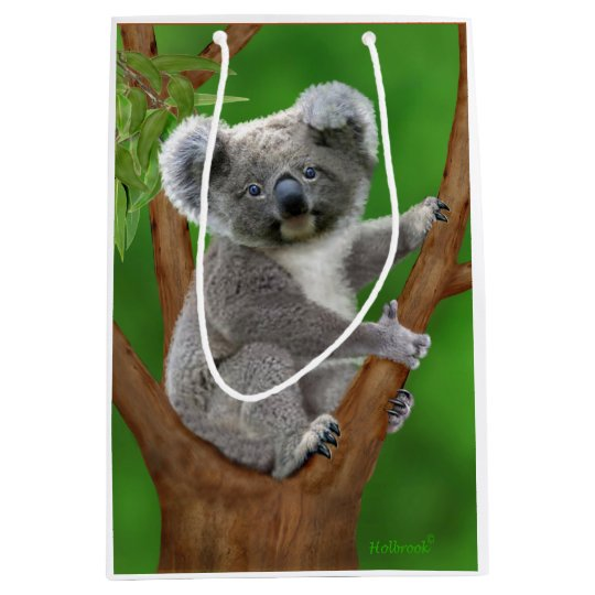 Blue-Eyed Baby Koala Bear Medium Gift Bag