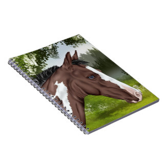Blue Eyed Bay Paint Horse Foal Notebooks
