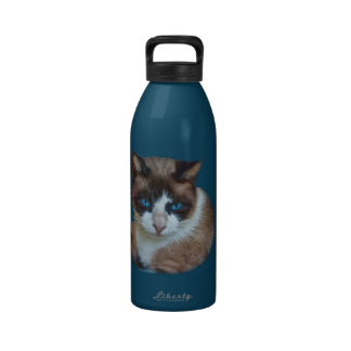 Blue Eyed Brown and White Cat Drinking Bottle
