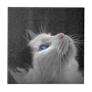 Blue Eyed Cat Photo Tiles