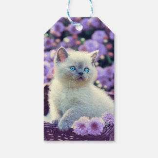 Blue Eyed Kitten Baby Cat In Basket Lilac Flowers Gift Tags