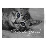Blue Eyed Kitty Thank You Card