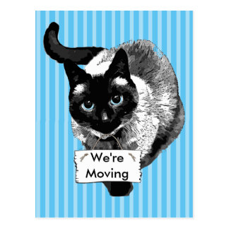 "Blue Eyed Siamese Cat Holding ""We're Moving Sign Postcard"