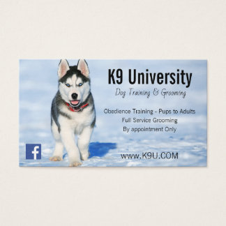 Blue Eyed Siberian Husky Dog Training/Groom Card
