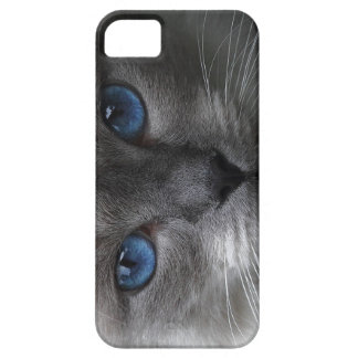 Blue eyes iPhone 5 cases