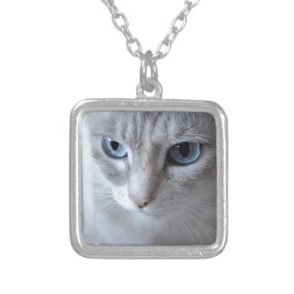 Blue Eyes Kisa Cat Silver Plated Necklace