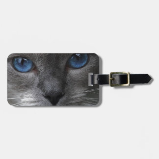 Blue Eyes Luggage Tag