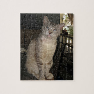 Blue Eyes Meece the Cat Puzzle