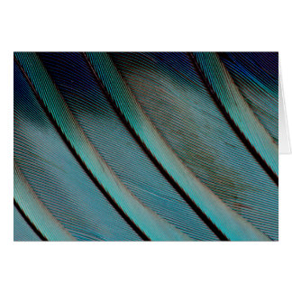 Blue feather pattern card